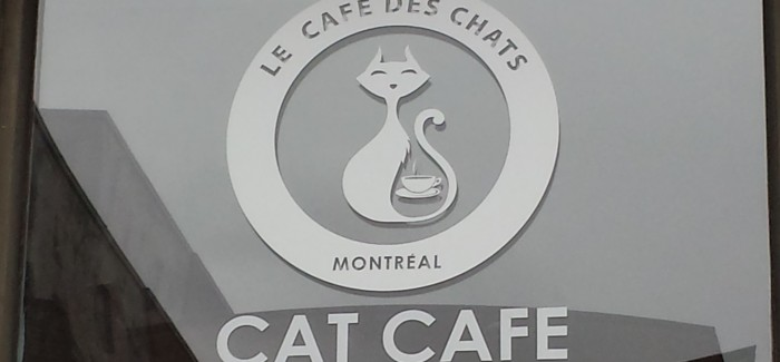 Cat Cafe! Le Café des Chats.